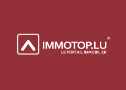IMMOTOP Logo CMJN registered