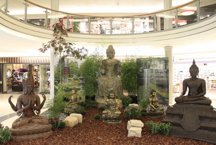 cactus belle etoile expo a la rencontre de bouddha du 9 au 20 septembre merkur corporatenews. Black Bedroom Furniture Sets. Home Design Ideas
