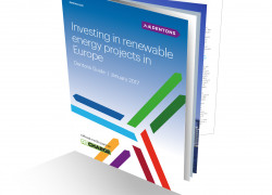THUMBNAIL - Dentons Guide to Investing in renewable energy projects in E...