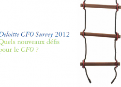 Deloitte CFO survey